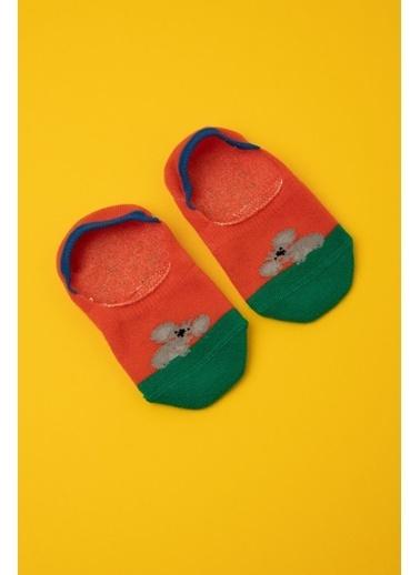 Katia & Bony Koala Desenli Görünmez Bebek Çorap -Turuncu Oranj